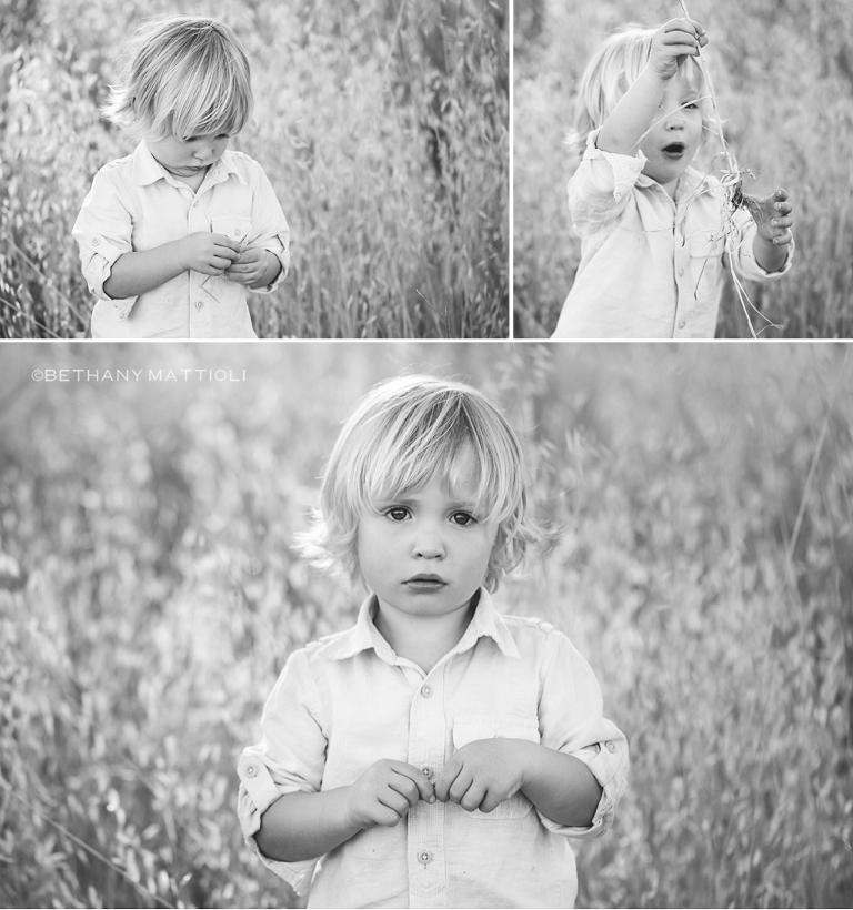 Blond Toddler Boy | Bethany Mattioli Photography - Bay Area Children Photographer